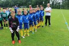 F-Jugend-Turnier-2017-3