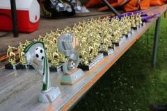 F-Jugend-Turnier-2017-5
